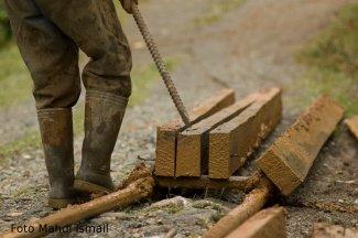Ilegal Loging